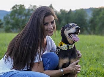 Better Dog Behavior