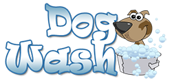 Annual Dog Wash