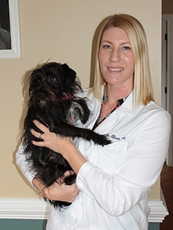 Old Dominion Vet >> Appointments Old Dominion Animal Hospital