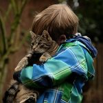 When Cats Adopt