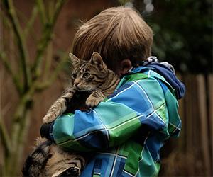 Handling your cat
