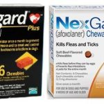 Great Deals on Heartworm, Flea & Tick Prevention!