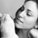 Four Places to Pet Your Cat — and One to Leave Alone