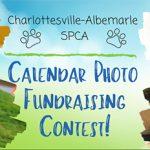 Photo Calendar Contest