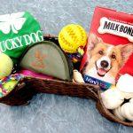 Basket of Fun