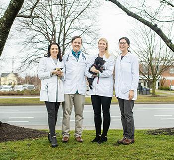 Charlottesville Veterinarians