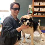 Laser Therapy: Shining a Light on Pain