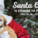 PetSmart with Santa