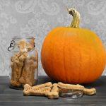 Pup-tastic Pumpkin
