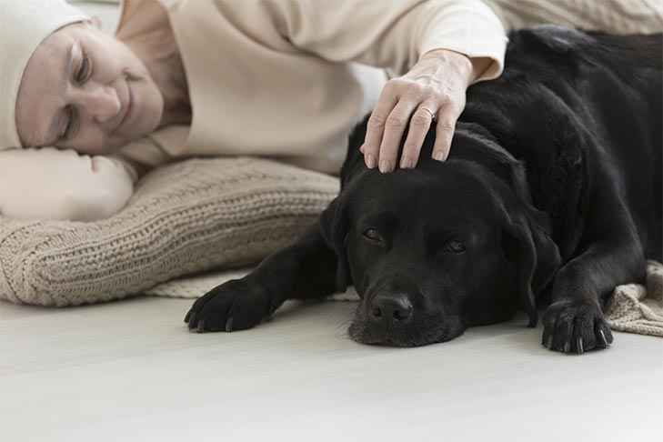 Caring for your Chronically Ill Pet
