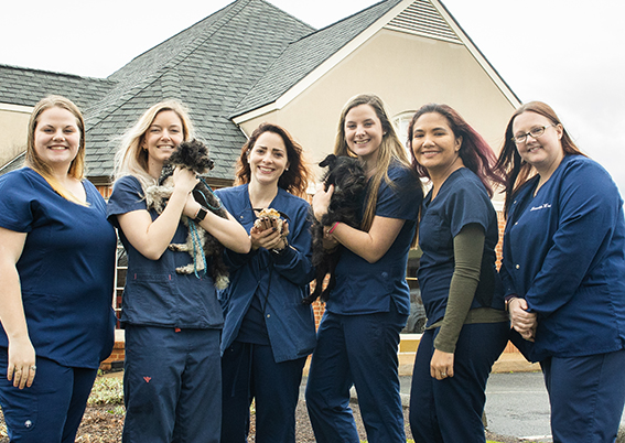 Our veterinary tech & assistants