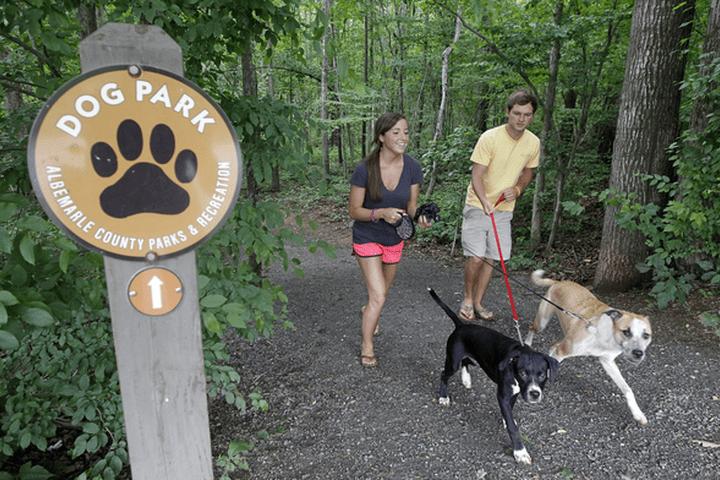 Best Dog Walking Trails in Charlottesville
